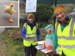 Abergynolwyn Duck Race