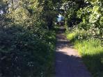 Pathway to Llwyngwril Beach