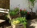 Share the Store's garden in the daytime. In the evening, it's all yours.