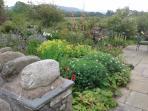 The Buttermere garden