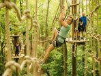 Forest Adventure park - 5 mins away - think Go Ape on steroids...!!