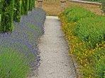 Garden's path