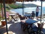 Beach bar with shade