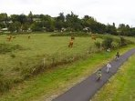 Piste cyclable de 52km allant de Sauveterre de Guyenne à Bordeaux, un régal.