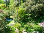 One acre of tranquil sub tropical gardens in a valley, view from living room