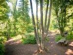 Weston woods picnic area 5 minutes walk