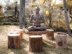 Hillside Eden Bali - Yoga or other activities, we can arrange it for you