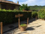set on a quiet wooded hill-side, on the road between San Gimignano and Volterra