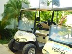 Golf carts and ATV's are available for sightseeing upon payment of minor fee.