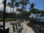 Kona Isle #C6 - BBQ/Picnic Area located by the ocean