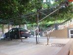Parkplatz unter Kiwis uns Trauben