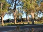 Parks all around the neighborhood