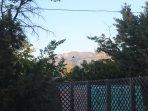 Sandia Mountain from the backyard