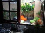 rear garden view from kitchen window