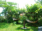 The garden with the hammocks
