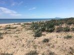 Dunas playa de Daimuz