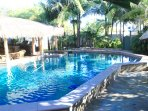 Pool surrounded in Tropical setting