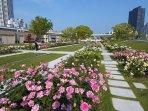 Nakanoshima Park,Rose blooming season:  5/M-5/E 10/B-10/E