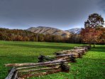 One of the many natural wonders of the Smokies - Cades Cove