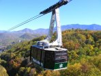 Ober Gatlinburg which will take you to the top for amusements, shopping, ice skating, & skiing