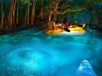 Bioluminescent Bay Kayak Tour