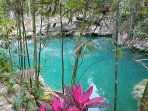 The beautiful Cenote Zapote right here in Puerto Morelos