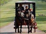 Take a horse drawn carriage through Windsor.
