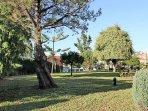 Shared Garden & Playground