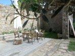 terrasse et jardin ombragé