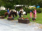 Pony rides and also cart rides available on the park .Great for the children