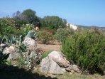 Vista del giardino dall'entrata della villa