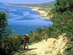 Explore the stunning Akamas Peninsular.