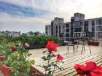 The roof garden of apartment