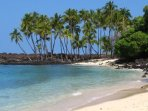 Tropical paradise! We love the Big Island beaches.  Visit the Big Island and find your favorite!