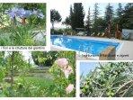 Il giardino, la piscina e l'edificio  sono immersi nel paesaggio ambientale e agricolo