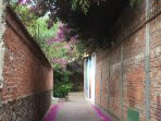 Magical pathway to our house