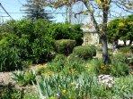 Lush Gardens Leading to Green House
