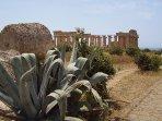 Parco archeologico Selinunte  Tempio di Era