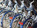 free bicycles provided during your stay for you to enjoy site seeing