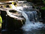 Visit Elderflower cottage and enjoy this ;)  view from garden area at Elderflower cottage :)