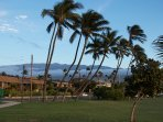 Kihei Park Shore with Haleakala in the distance.
