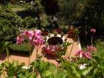 Vista del giardino dal balcone