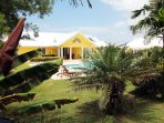 A hidden gem among lush tropical flora and fauna