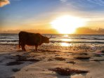 The beautiful sunset of the Hebrides