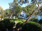 Monaco Ville exotic gardens with amazing views over Port Hercule!