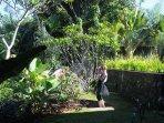 Constance - garden