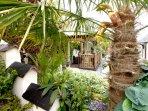A lush tropical garden exclusive to you