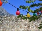 Giardino con orto e alberi da frutto (spazio comune)