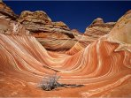 The Wave -Escalante Visitor's center to enter the drawings to visit it just 4 minutes away