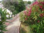 jardin & senteurs